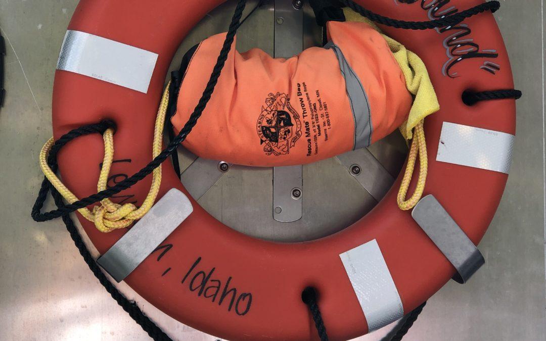 Snake River Jetboat Adventure